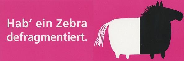 zebra_klein.jpg